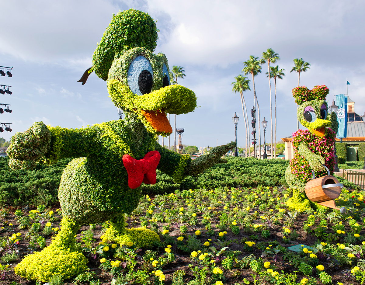 Kermit and Miss Piggy Topiaries at Epcot International Flower
