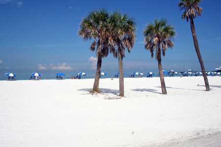 clearwater beachx