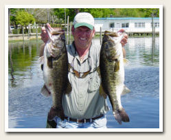 gators big bassx