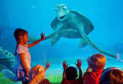 turtle-talk