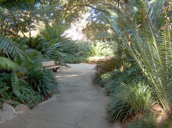 cretaceous-trail