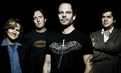 gin-blossoms
