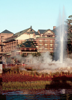 wilderness-lodge-geyser
